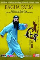 Lvshan Wudang - Bagua Palm Part I, II