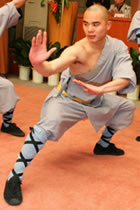 Shaolin Single Arm Short Robe w/ Pants (CM)