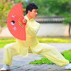 Professional Taichi Kungfu Uniform with Pants - Cotton/Silk - Yellow (RM)