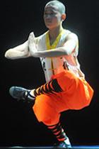 Shaolin Kungfu Vest (RM)