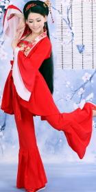 古典仙女舞蹈裝 (成衣)
