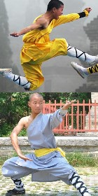Shaolin Single Arm Short Robe w/ Pants (RM)