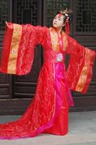 Tang Style Hanfu
