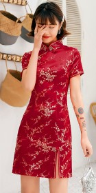 Short-sleeve Short Brocade Cheongsam Dress (RM)