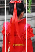 Bowknot Ribbon (Multicolor)