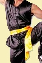 Kungfu Sash (Multicolor)