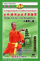 Shaolin Small Arm-through Fist II