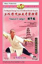 Shaolin Two-sectional Staff