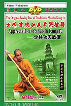 Shaolin Kung Fu Appreciation