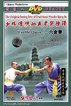 Shaolin Six Conformities Fist