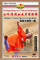 Shaolin South House Big Arm-through Fist I