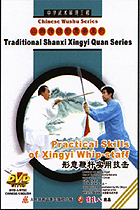 Practical Skills of Xingyi Whip-staff