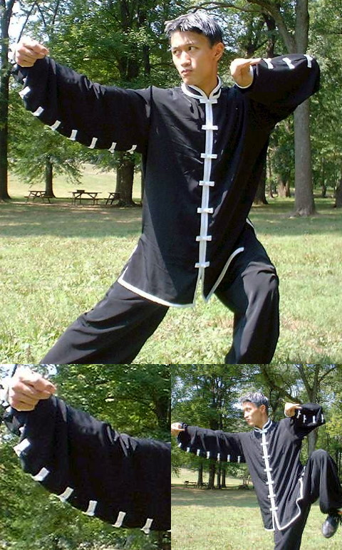 Pray Mantis Fist Kung Fu Suit (CM)