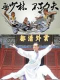 Taichi | Kungfu | Shaolin | Wudang